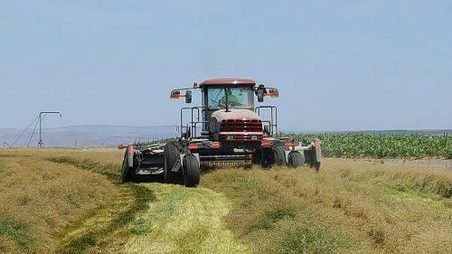 Arc KBG Harvest